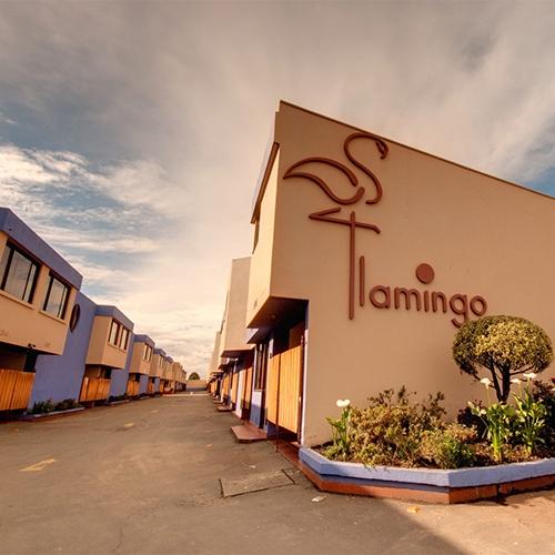 Motel Flamingos