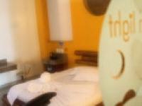 Motel Moonlight 2579