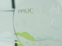 Motel Moonlight 2583