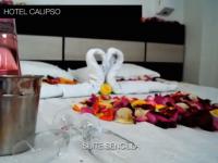 Motel Flamingos 3111